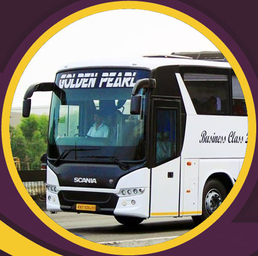 gold travel cochin review